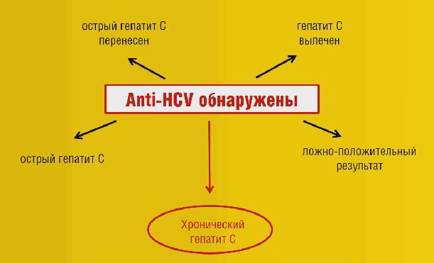 Анализы на гепатит С. Анализ крови на гепатит
