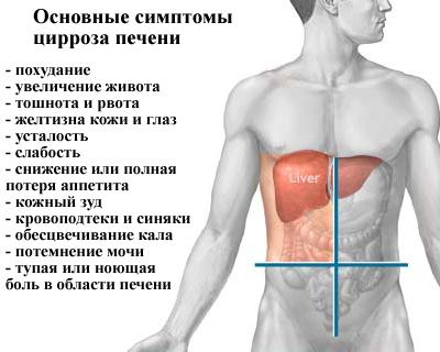 Может ли быть низкий гемоглобин при болезни печени
